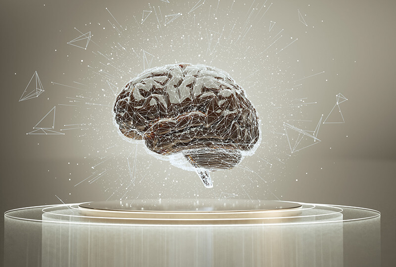 右脳と左脳では役割が違います