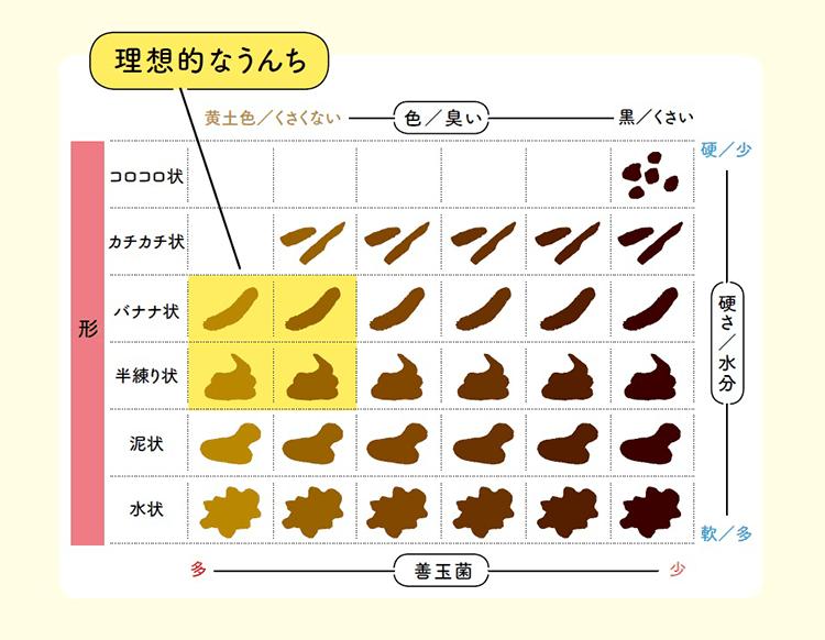 【うんち診断図】便の色・形・においで腸の状態をチェック!