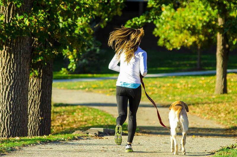 ジョギングはダイエットに効果的な運動