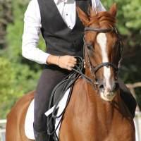 サムネイル 乗馬
