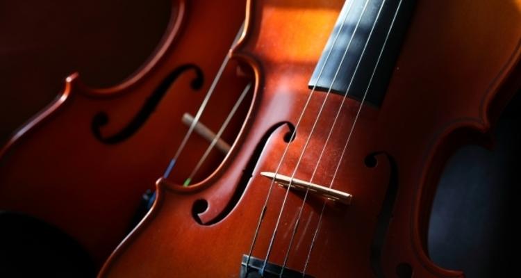 School violin