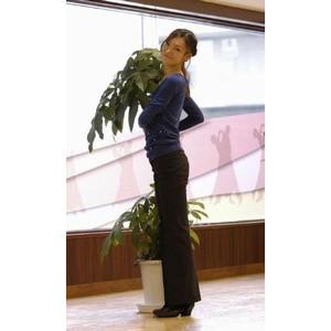 ダンスパークヤナギバシの写真9