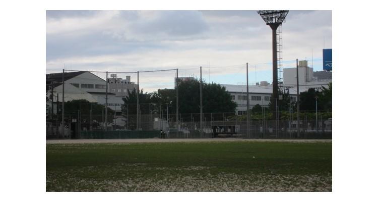 School        14