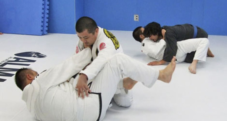 School jujitsu